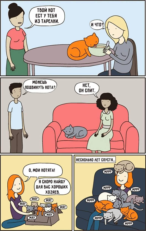 15 комиксов, которые поймут все владельцы кошек