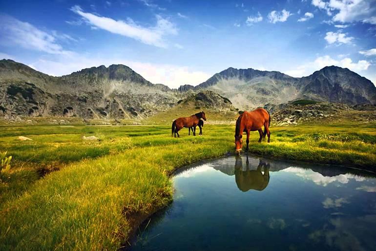 Природные парки Болгарии