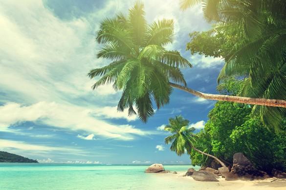 Сейшелы — рай на земле!