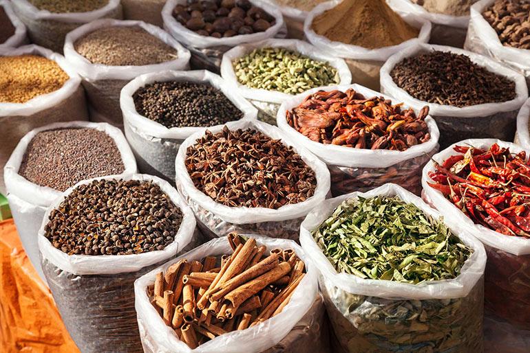 Индия: отдых на любой вкус в многоликом Гоа