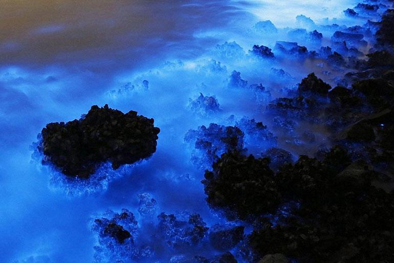 Синее свечение вод в порту Гонконга