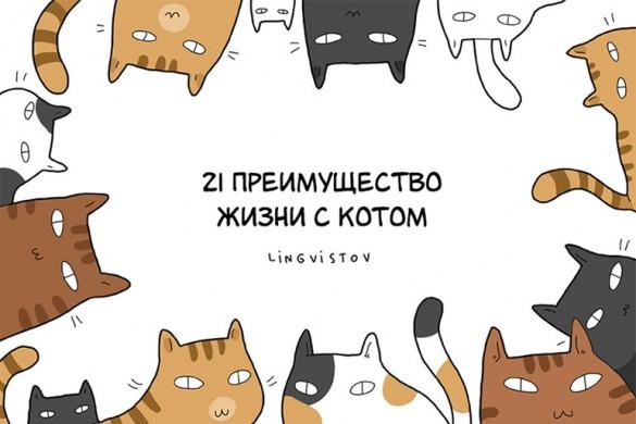 21 преимущество жизни с котом