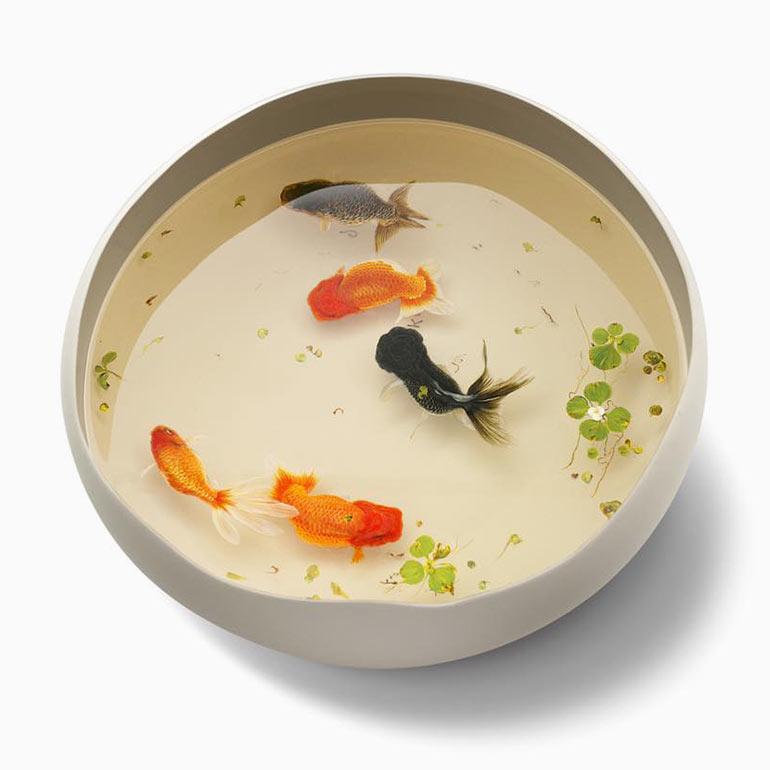 Дивный подводный мир художника Кен Лай